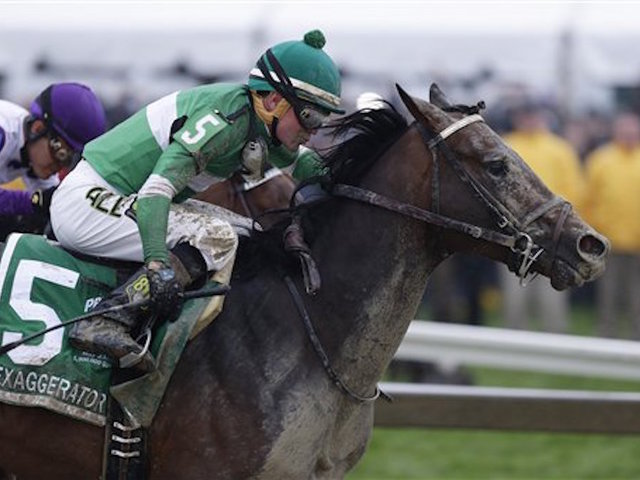Nyquist fails in Triple Crown bid as Exaggerator wins Preakness Stakes