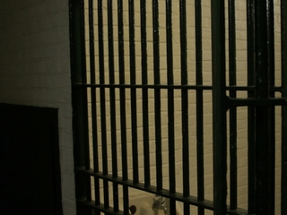 Obama commutes sentences of 5 Indiana inmates
