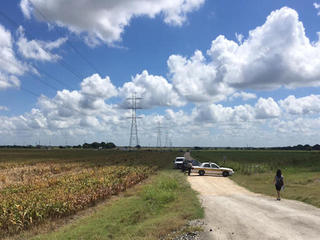 'Number of fatalities' in Texas balloon crash