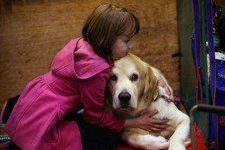 Indiana Animal Health Board warns of dog flu
