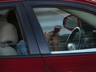 Deputy caught texting and driving by detainee