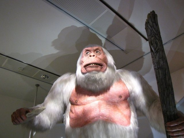 DNA tests reveal the Yeti's not-so-abominable identity