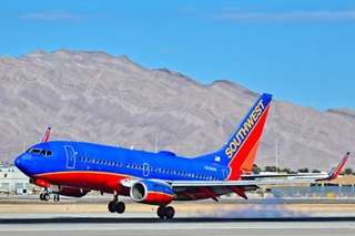 Southwest: Only dogs and cats as support animals